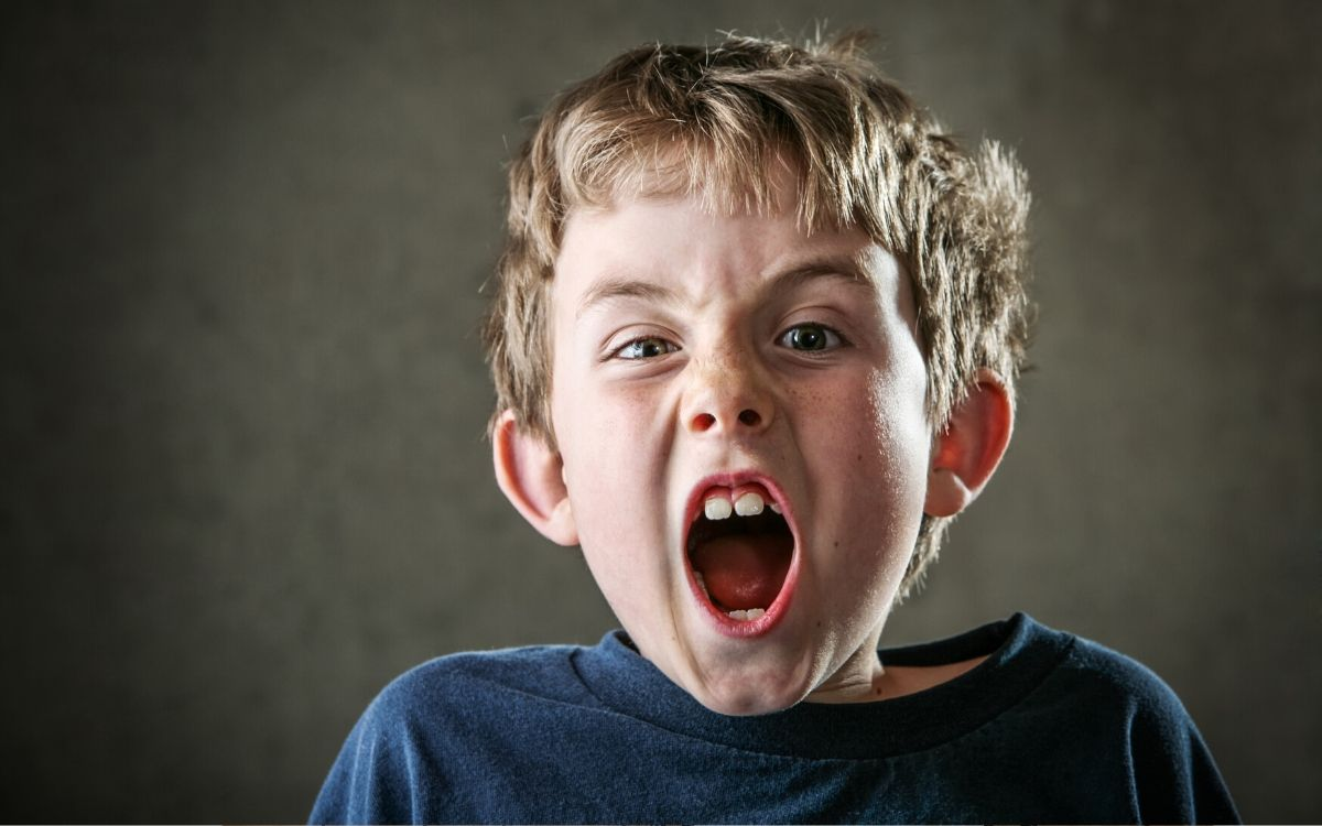 4 goals of misbehavior in kids