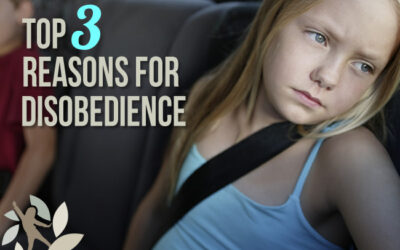 Tired, Hungry, and Bored: Top Three Reasons for Disobedience